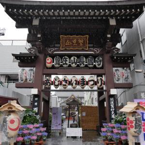 【東京】長國寺(2019年あじさい祭限定御朱印)