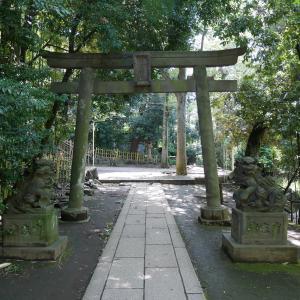 【東京】渋谷氷川神社(2019年7月限定・夏詣限定御朱印)