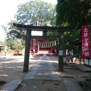 【埼玉】三芳野神社