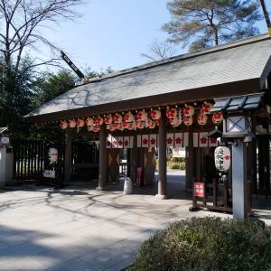 【千葉】櫻木神社(2020年四季色字冬色限定御朱印)