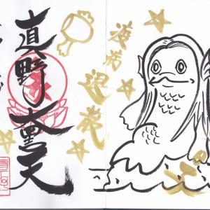 【千葉県】真野寺(納経特別御朱印)