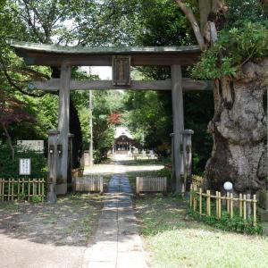【千葉県】子安神社(2020年7月・七夕・夏詣・大賀ハス限定御朱印)