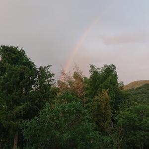 木曜日の虹と今日の空