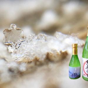 明日は営業日 〜雪〜