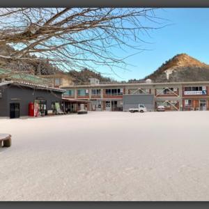 新年明けて初めての産直営業日はなんと雪景色