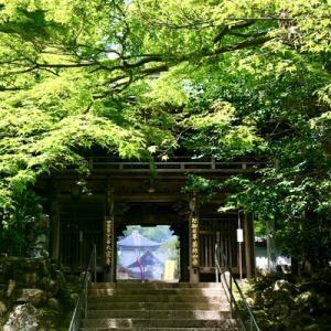 8月8日(山の日)は大窪寺で『柴燈大護摩供養』があります