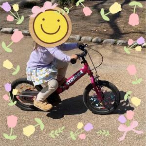 3歳娘、10日で自転車に乗れるようになるまで。