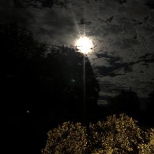 シャスタの満月ENERGYと共に「新月ENERGY瞑想ワークショップ」開催します!