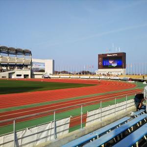 丸亀国際ハーフマラソンに参加しました