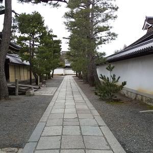 朝のウオーキング:妙心寺