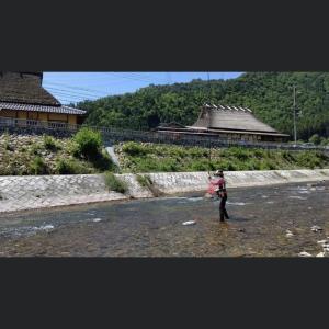 京都・美山川 試し釣り情報