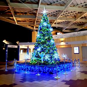 新江ノ島水族館ナイトツアーに家族で参加しました