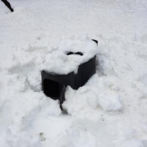 春の大雪に閉じ込められる