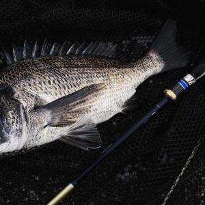 「能登チヌトップ」久々の釣りは苦戦を強いられた。