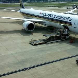 シンガポール航空 女性には言えない♥️