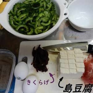 ~~ ゴーヤーの季節 ~~