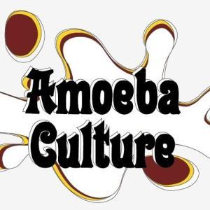 (吉報)Amoeba Culture X NCT127のコラボニュース!