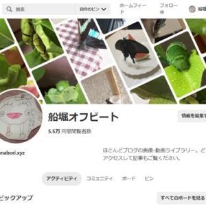ピンタレスト 動画アップロードで閲覧数急増!