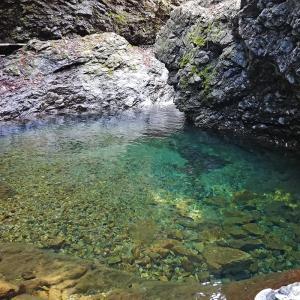 春の秋川渓流釣り 2021