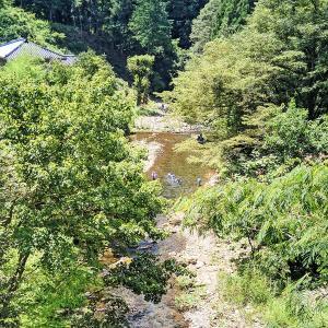 お盆の秋川渓流釣り