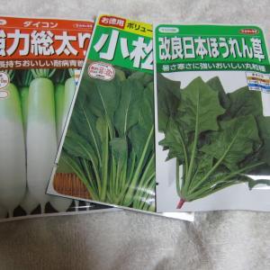 家庭菜園を始めました。