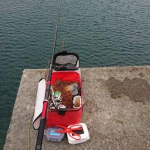 今日は2つ。 布良漁港