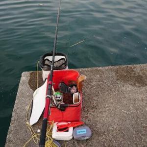 諦めなくて良かった~。 布良漁港
