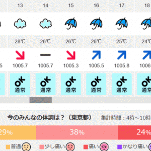 弧状列島,東京 気象病 6/6(土)4時~10時 皆の体調痛い71%