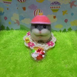 帽子ハムスター(ジャン女子)