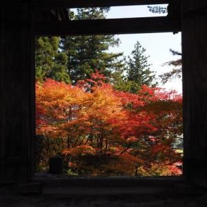 紅葉のある風景その1@2019/11/17 。。。