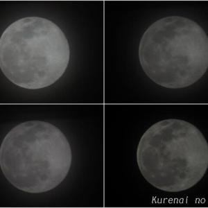 月のある風景@2021/02/27 。。。