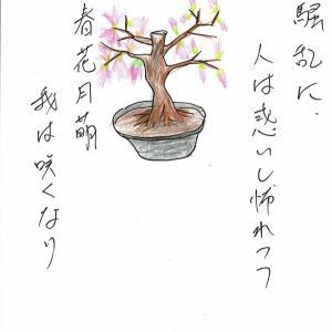 緊急事態宣言下でもジョギングは可と、桜咲く