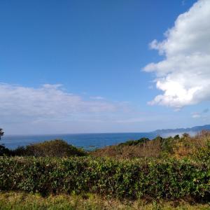 日本海とマイカー