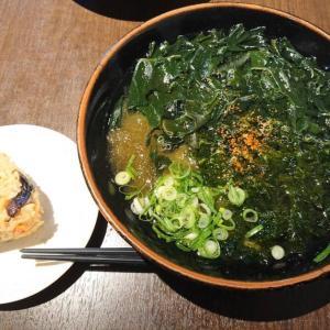 【福岡県糸島】ひなたうどん 2号店 山菜おにぎり ふさふさうどん(海藻祭り)ときつねうどん