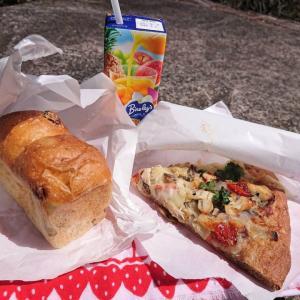 ブルージャムのパンを持って蛤岳へ サバとパクチーのピザとぶどうパンを持って蛤水道を歩く