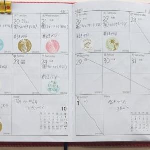【英語学習記録】10/19〜11/15【4週間】