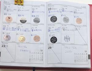 【英語学習記録】11/16〜11/29【2週間】