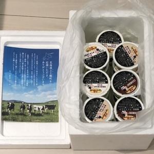 【ふるさと納税】北海道上士幌町 十勝もーもースイーツ 牛乳そのまんま三色アイスセット<80ml×20ヶ>
