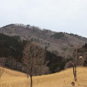 高原を歩いてみれば。砥峰高原の早春