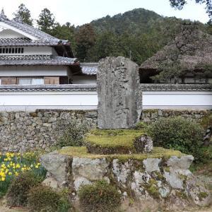 山深く水仙のお寺に参る
