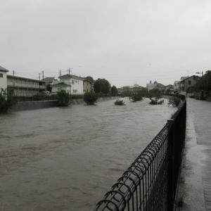 気になった空堀川の水位