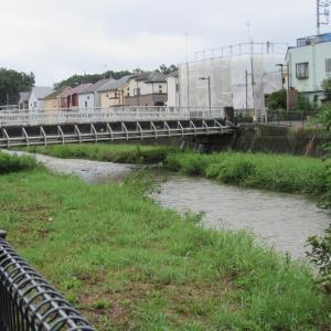 今日の空堀川は流れ多し