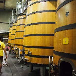 フランス&スペイン旅「ワインとバスクの旅!ボルドーで楽しむメドックのシャトーめぐり!」