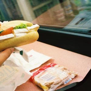 オランダ&ベルギー旅「気ままに過ごす快適旅!アムステルダムからデン・ハーグへ。列車で食べる飯はなぜうまい?」