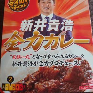 新井貴浩全力カレー