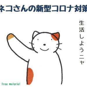 番外編:ネコさんの感染対策