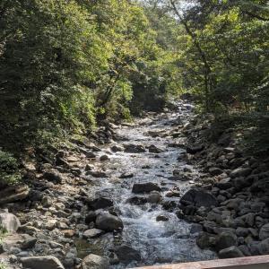 パニックキャンプ 10月2日(金)〜3日(土)道志の森