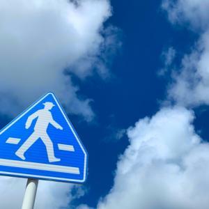 【元警察官が注目する】横断歩行者妨害について【おかしい?理不尽?点数は?】