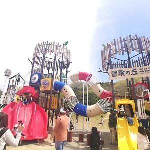 加瀬沼公園の新しい遊具で遊んできた!デイキャンプやお花見も楽しめる公園