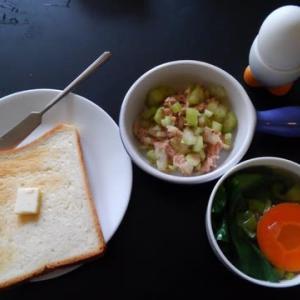 0111朝食:ツナセロリ